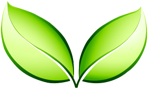 fruits bio à Douarnenez | Bio Douarnenez